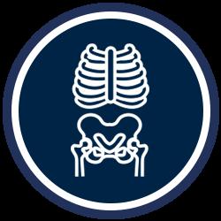 Chiropractic Scott LA X-Ray